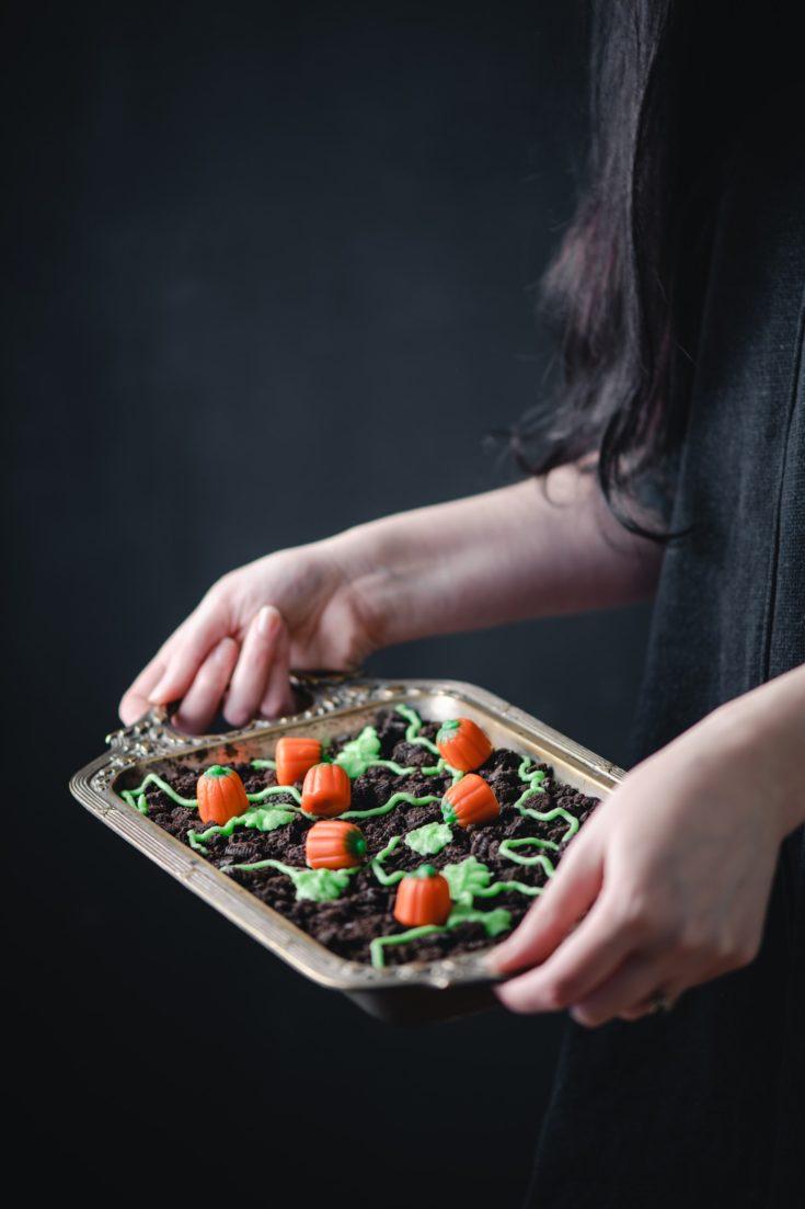 Champ de citrouilles fondant chocolat-marrons